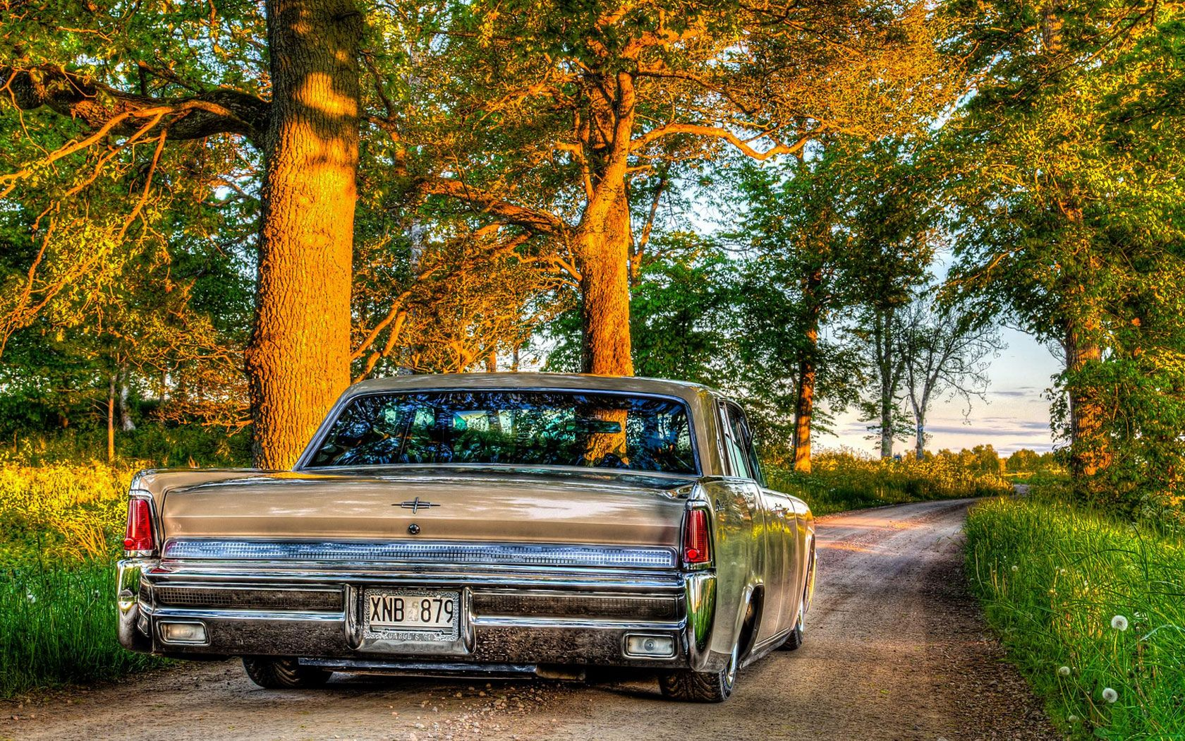 Lincoln Continental by Albin Berlin
