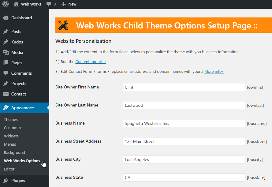 Web Works Theme Options