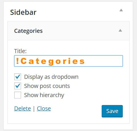Widget with Custom Title Hidden